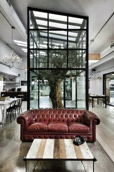 KOOK by Noses Architects. Great mix with classic chesterfield with industrial coffee table and contemporary open plan kitchen