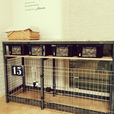 Training Your Pet Parrot Puppy Pens, Pet Corner, Crate Cover, Dog Cages, Dog Furniture, Parrot Toys, Dog Rooms, Animal House, Dog Houses