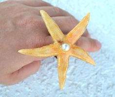 REAL Starfish & Shell Rings by myNaturesDESIGN on Etsy, $24.00
