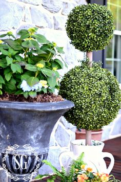 Simple Outdoor Vignette featuring Balsam Hill Double Boxwood Topiaries