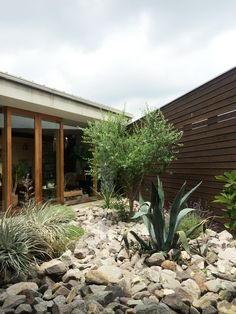 Dry Garden, Side Garden, Home And Garden, Japanese Plants, Deck Decorating, Green Life, Garden Styles, Landscape Design, Backyard