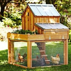 I will have chickens! 100′s Of Free Chicken Coop Plans Great idea.. I would like this two layers and a rooster..