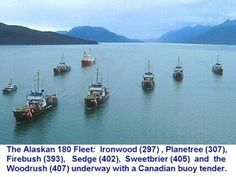 Group of USCGC 180's and CCGC Buoy Tender in Alaska