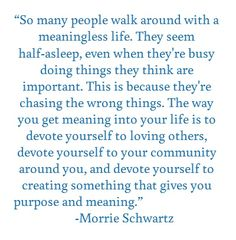 Quote Morrie Schwartz Meaning of Life Devote Yourself to Loving ...