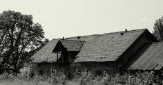 #black cottage white