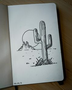 Cactus in the desert at sunset