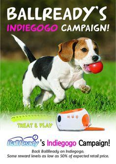 반려견은 애완동물이 아닌 가족입니다.  볼레디는 단순장난감이 아닌 사랑입니다. BallReady makes your dog happy and your dog makes you happy.