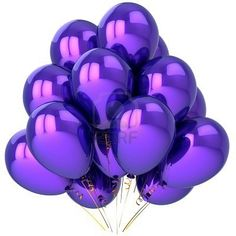 Picture of Party balloons colored purple. Isolated on white background stock photo, images and stock photography.