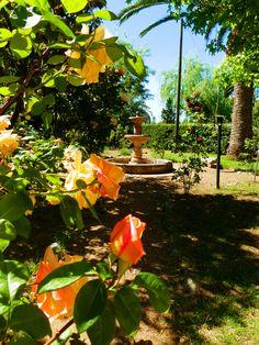 Un Jardín Tuncano