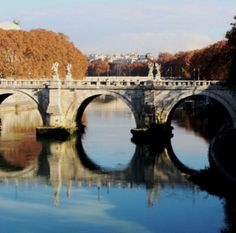 Usuario: rachu (ITALIA) - OCRES DE LA RIVERA ROMANA - Tomada en VATICANO ROMA el 14/12/2016