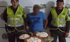 Cinco mil huevos de iguana fueron incautados
