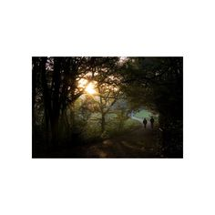 The delights of Hampstead Heath and cheap hotels in the vicinity found on Polyvore