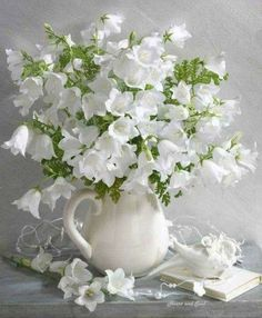 White flowers in white vase All Flowers, Fresh Flowers, White Flowers, Beautiful Flowers, Wedding Flowers, White Roses, Wedding Bouquets, Beautiful Flower Arrangements, Floral Arrangements