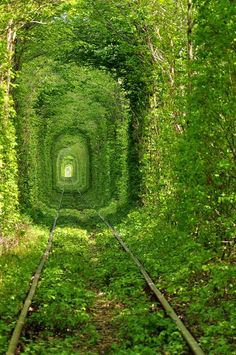 Tunnel of Love, Ukraine, The Tunnel of Love is an amusement railway located near Klevan, Ukraine. It is a railway surrounded by green arches[1] and is three kilometers in length.