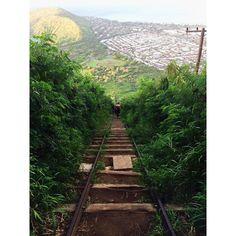 Koko head vandringsleden. Otrolig utsikt men kommer man orka gå upp.. kanske om det är dåligt väder hahah ;P I solsken och hetta..njaa Hawaii Travel, Railroad Tracks, Island, Instagram Posts, Islands, Train Tracks