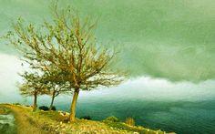 I uploaded new artwork to fineartamerica.com! - 'Dead Trees At  Sea' - http://fineartamerica.com/featured/dead-trees-at-sea-lanjee-chee.html via @fineartamerica