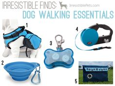 Five Irresistible Dog Walking Essentails on IrresistiblePets.com