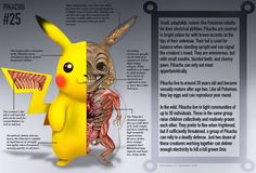Amazing Pokemon Anatomies!