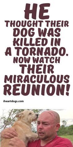 He Thought Their Dog Was Killed In A Tornado, Now Watch Their Miraculous Reunion <3