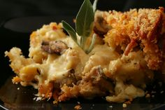 Wild Mushroom Macaroni and Three Cheeses with Truffle Oil. Bechamel-based sauce with herb goat cheese, parmigiano reggiano, and sauteed mushrooms deglazed with sherry vinegar. Also truffle oil. HEY GUYS COME OVER