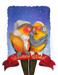 Sun Conure Holiday Card SINGLE Warmest Wishes