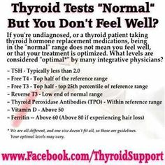 """To quote my endocrinologist, """"The test results are bullshit. I know hundreds of people that were within 'normal' ranges and very sick. They were ignored."""""""
