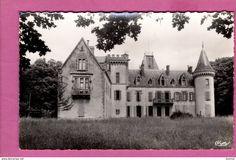 Frankreich - 03 allier toulon sur allier chateau du colombier ( format 9x14 )