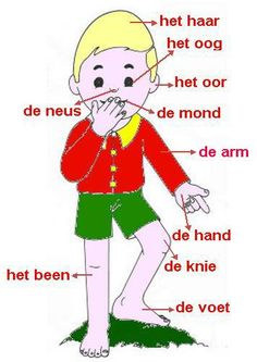 French Language Lessons, Dutch Language, Learn A New Language, Dutch Phrases, Dutch Words, Learn Dutch, Dutch Netherlands, Kids Learning, Learning Resources