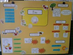 Les saisons French Immersion, Interactive Notebooks, Projects To Try, Map, Education, Cycle 2, Explorer, Camille, Aide