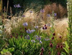 The Beth Chatto Gardens - Gravel Garden