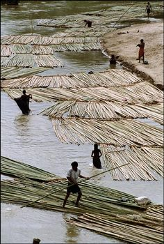 ian berry(1934- ), bangladesh. rangamati. bamboo poles being rafted down the river. 2000. https://www.magnumphotos.com/C.aspx?VP3=CMS3&VF=MAGO31_10_VForm&ERID=24KL53ZPKF