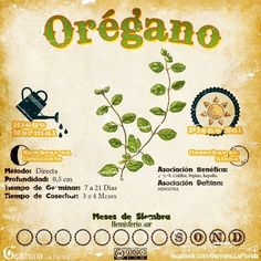 Organic gardening is the ideal way to grow a garden if you are concerned about harmful chemicals in your garden.