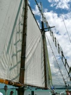 Sails on the Ted Ashby Scow in New Zealand