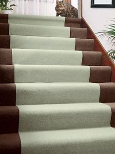 12 Best How To Protect Carpeted Stairs Images Stairs