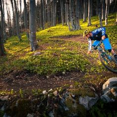 Bike park Krvavec has the biggest altitude difference among Bike Parks in Slovenia. It has of marked bike trails for all tastes and all levels of biking skills. Bike Parking, Bike Trails, Slovenia, Hiking Boots, Mountains, Summer, Travel, Summer Time, Viajes