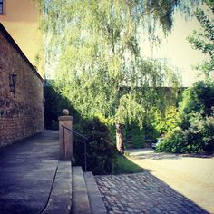 Sommerlicht am Schloss in #zeitz #ilovezeitz #moritzburgzeitz #sommer