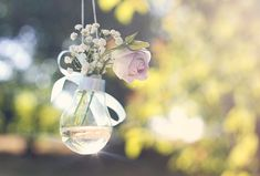 This is rad- Lightbulbs with ribbon around them as vases, hanging from stuff with fishing wire
