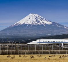 shinkansen bullet train Mount Fuji Japan