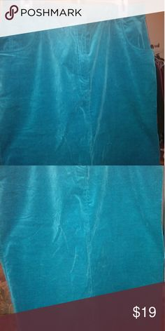 Cute Teal Skirt CUTE. LONG VELVET SKIRT WITH SLIP IN BACK Skirts