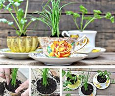 40 Ideas of How To Reuse Tea Cup Artistically! http://www.architectureartdesigns.com/40-ideas-of-how-to-reuse-tea-cup-artistically/