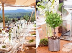 Bonsai style trees potted in simple galvanized cups added a lush and nature-inspired theme to this garden wedding reception!