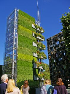 wow | vertical garden