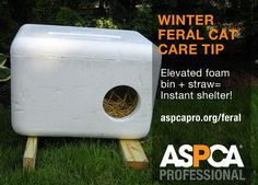 Diy feral cat house- anyone see a stray cat around lately? Make them a comfy home for winter if you can't catch them! Diy feral cat house- anyone see a stray cat around lately? Make them a comfy home for winter if you can't catch them! Feral Cat House, Feral Cat Shelter, Cat House Diy, Feral Cats, Tnr Cats, Cat Shelters For Winter, Outside Cat House, Outside Cat Shelter, Outdoor Cats