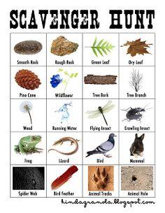 ... Outdoor Activities on Pinterest | Nature Study, Outdoor and Challenges
