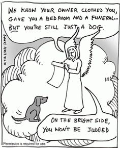 Angelic Twaddle™: Beloved Pets: Pets are wonderful companions on earth and maybe in Heaven; but they are not the crown of creation like humans. Things would be better on earth, if humans gave as much compassion as they have for pets, to other humans.