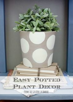 Add some color to your pots with this simple little project from The Golden Sycamore: Easy Potted Plant Decor