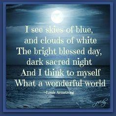 Michael Connelly Lost Light bright blessed days dark sacred nights lyrics