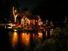 Christmas in Kupittaa Park, Turku    photo by aiskim