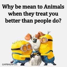 #Funny #Minion #Quote About Human vs. Animals ft. Minion...