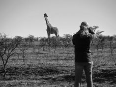 Enjoying the wildlife an incredible scenery as a vet intern in South Africa